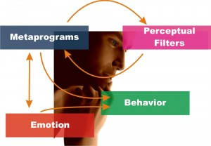 MindSonar metaprograms and behavior