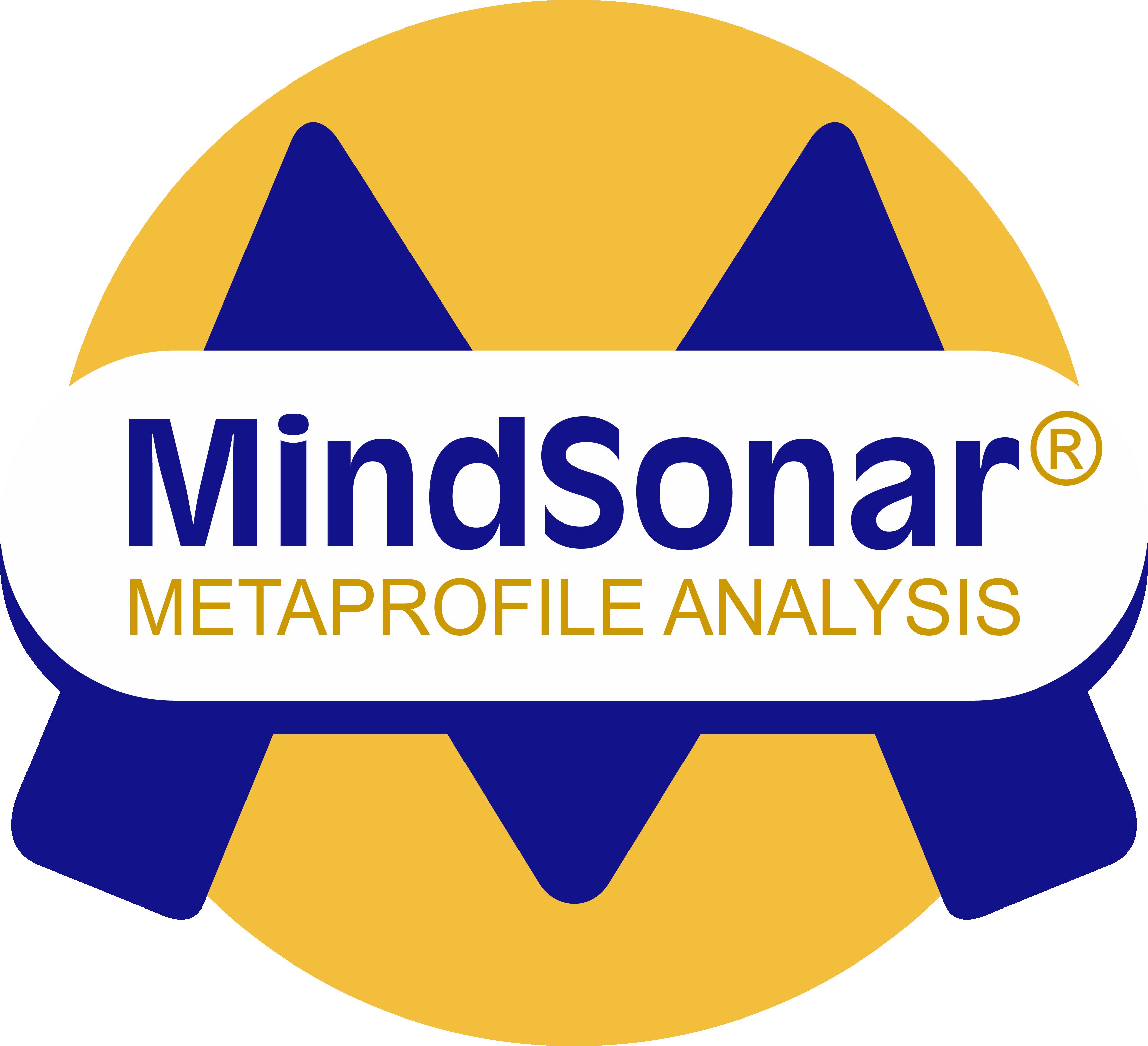 Logo_MS_2013_b