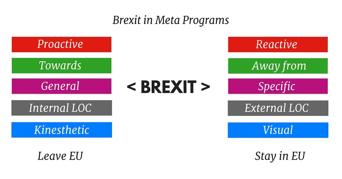 meta programs-3